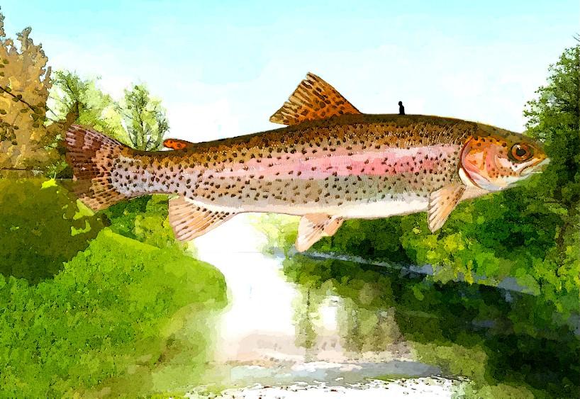 Simple Watercolor fish bridge